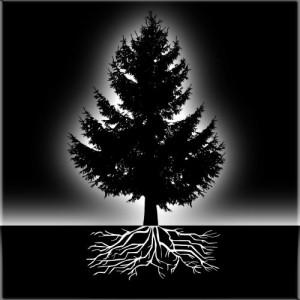 Mensch trifft Baum - Baum