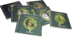 Celtic Lifetree Massage - Massage-CDs